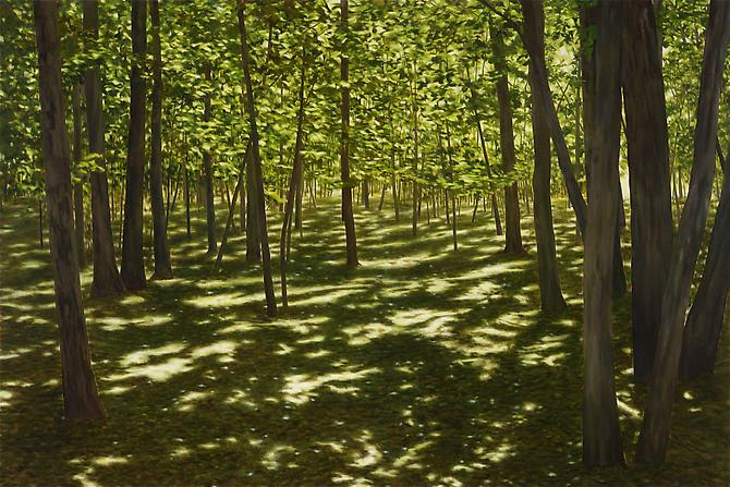 April Gornik Green Shade, 2012 oil on linen 72 x 108 inches