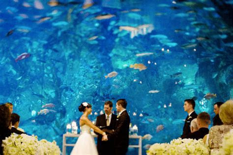 Cheap Wedding Ideas that Don't Feel Cheap   Clearpoint