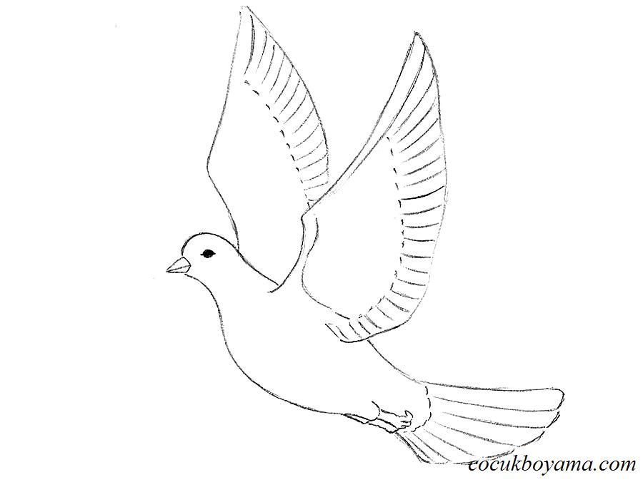 Güvercin 1 ücretsiz Boyama Resimleri