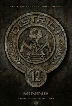 Hunger-Games-affiche-District-12