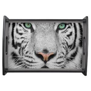 White Tiger Food Trays