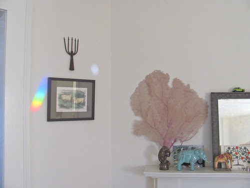 rainbow in winter