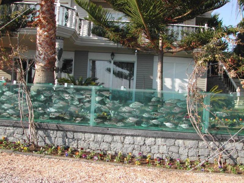 Empresário excêntrico contrói aqua-muro para cercar sua casa 05