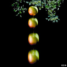 Apples falling (Esa)