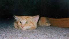 Jasper's first picture