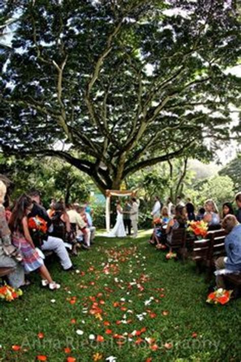 1000  images about Waimea Valley Wedding on Pinterest
