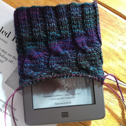 A kindle cozy for Scott