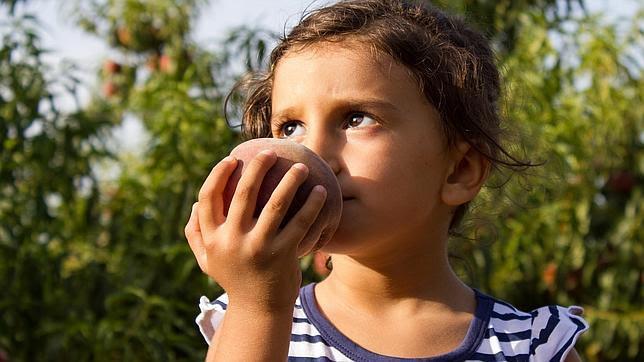 Una alergia alimentaria puede conducir a una alergia respiratoria