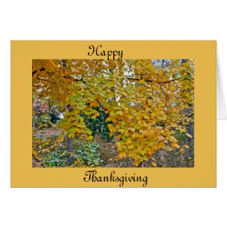Thanksgiving Cards Show You Care