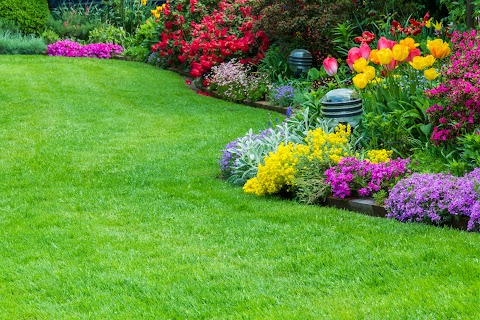 Gardening And Maintenance Services
