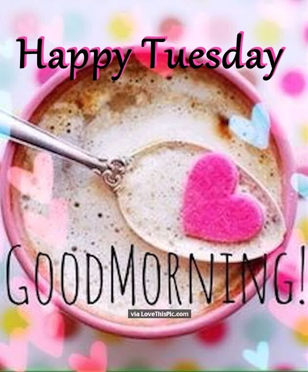 Have A Happy Tuesday Good Morning Pictures Photos And Images For