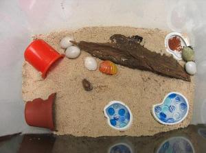 Crabitat Sample