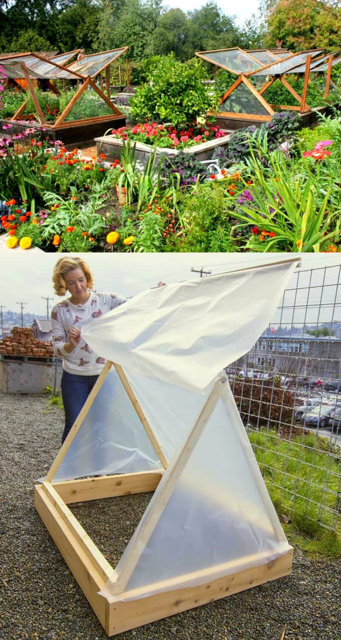 easy and cheap A frame greenhouse ideas