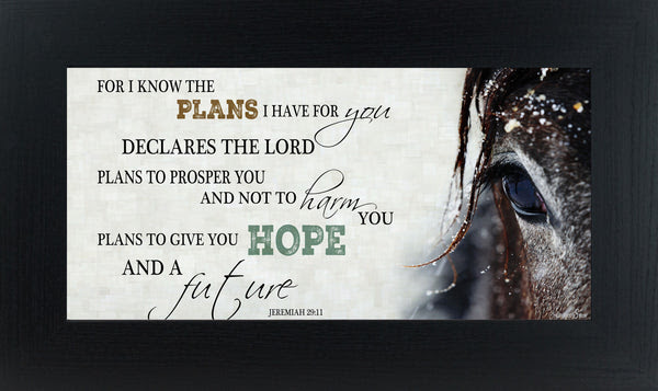 For I Know The Plans I Have For You Jeremiah 2911 Ssw1498 Summer