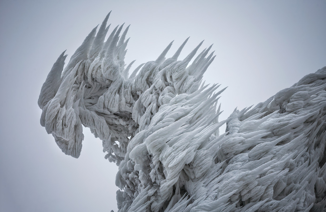 Spectacular Ice Formations Atop a Windswept Mountain in Slovenia weather Slovenia ice