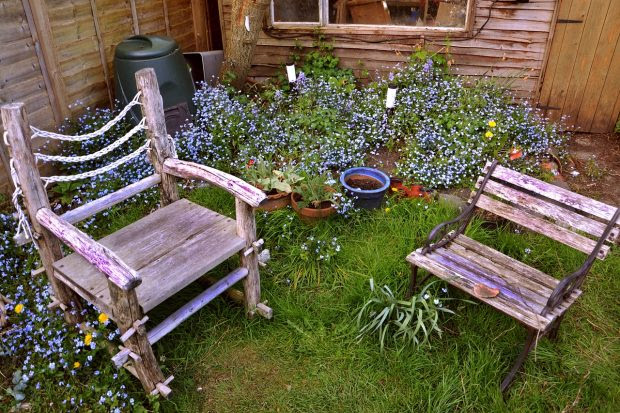 5 Tips For Making The Most Of Your Small Garden Space