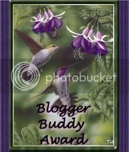 http://i184.photobucket.com/albums/x309/BigSoonersfan/BloggerBuddyAward.jpg