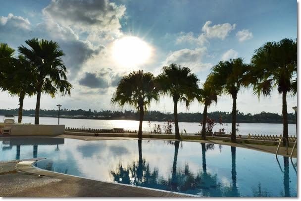 Swimming Pool & Palm Trees