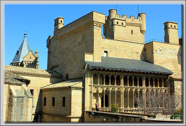 17 Palacio de Olite