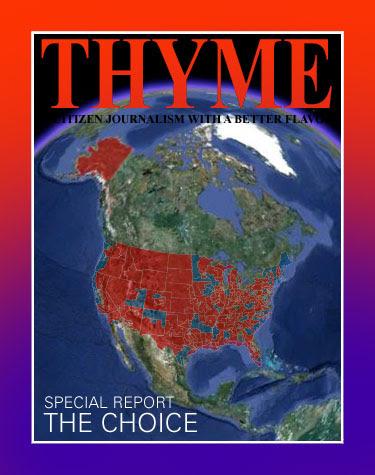 THYME0446
