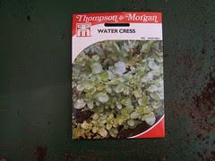 watercressseeds.jpg