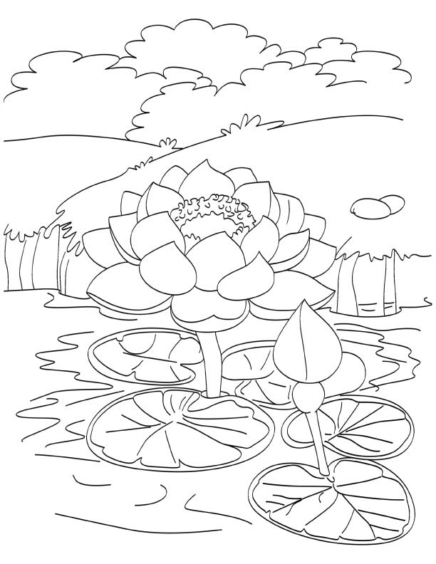 Japanese Landscape Lotus Fish Outline Drawing Stock Vector ...
