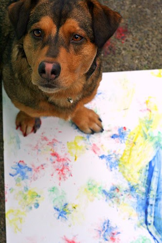 """144. """"Arts and Crafts"""" - Our dogs all have some form of inner artist - paw prints, """"carved"""" sticks, home """"redecorations"""", etc. Show us your dog's handiwork today! - last day Mar 29"""