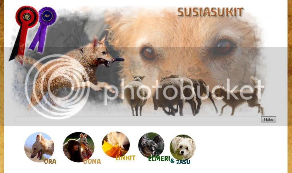 http://susiasukit.blogspot.fi/