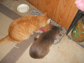 William & Mimi Eating Together