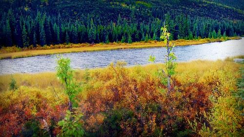 Autumn in Alaska - Landscape