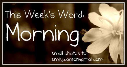 This week, Morning