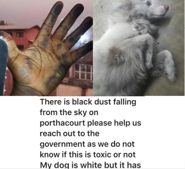 black-dust01