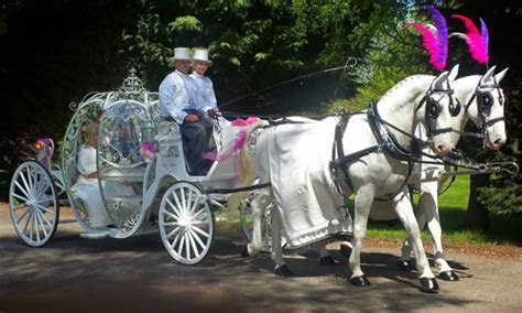 Areas We Covers: Solihull   Horse Drawn Occasions