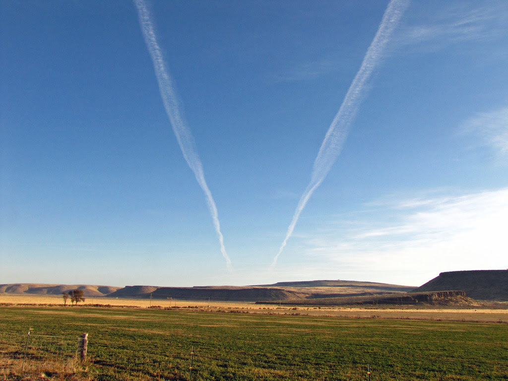 Jet Streams Over Cow Country