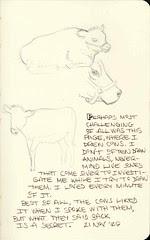 Sketchcrawl #3