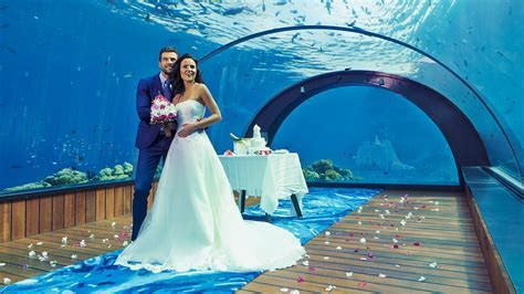 Hurawalhi   Underwater Restaurant Maldives Resort   Adore