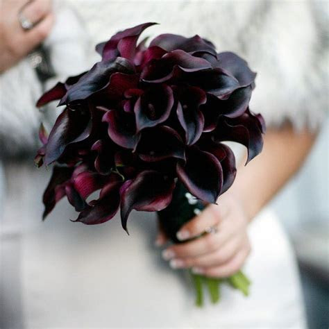 Dark Purple Calla Lily Wedding Bouquet