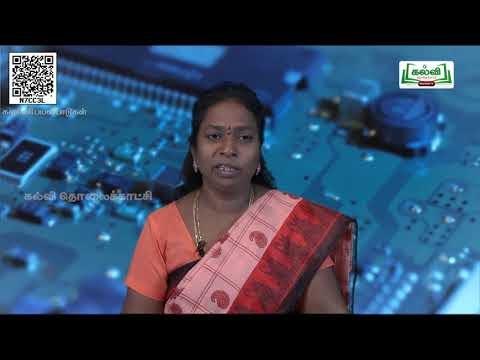 11th  Computer applications  ஜாவாஸ்கிரிப்ட் - ல் உள்ள கட்டுப்பாட்டு கட்டமைப்பு அலகு 14 பகுதி 3 Kalvi TV