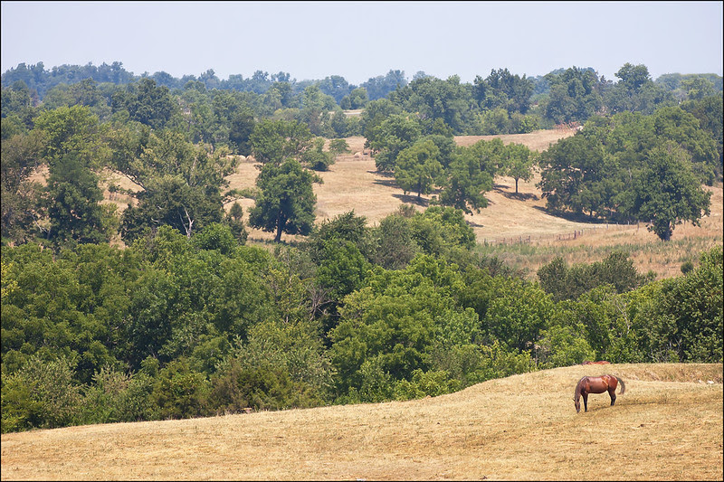 Peaceful Hills