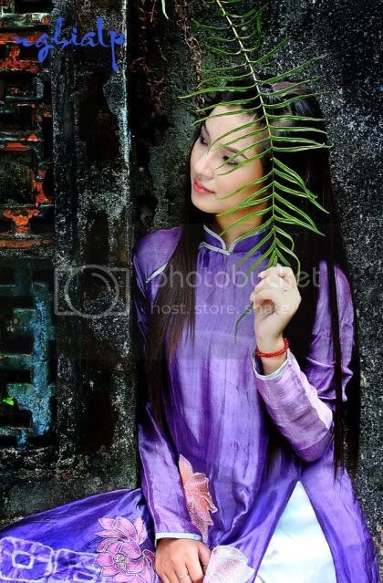http://i574.photobucket.com/albums/ss183/xuan_hoa1/4076921245_4b4c146d12_o.jpg