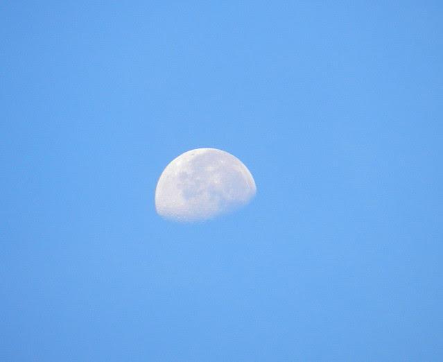 skywatchmnDSCN6854