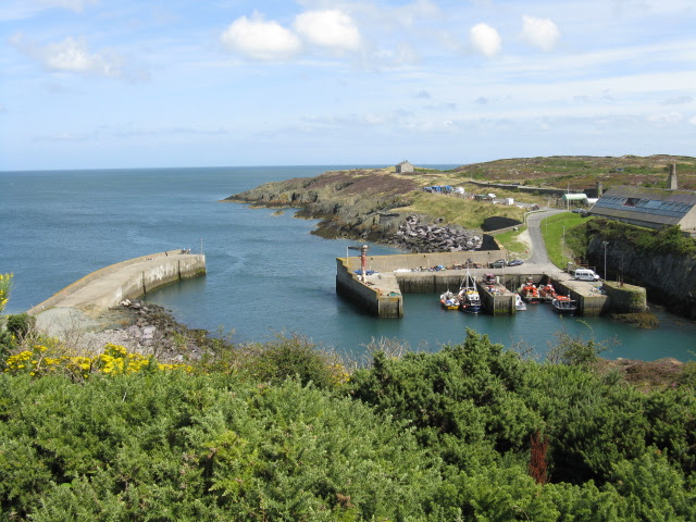 File:Amlwch Port From The Headland - geograph.org.uk - 1436555.jpg
