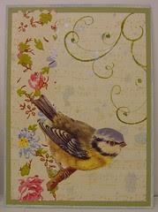 Birds n Bonnets swap 1