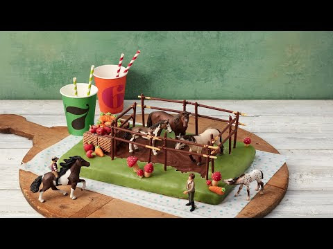 Kindergeburtstag Kuchen Bauernhof