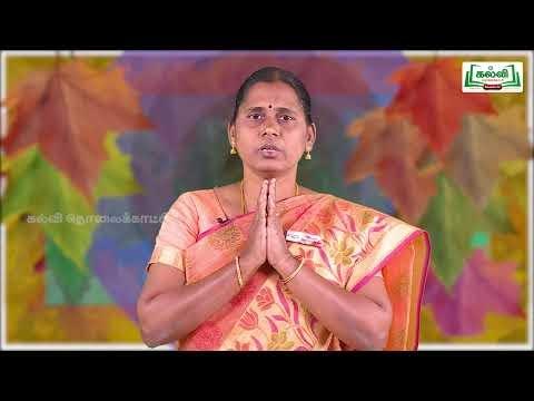12th Commerce சுற்றுச்சூழல் காரணி அலகு 7  பகுதி 3 Kalvi TV