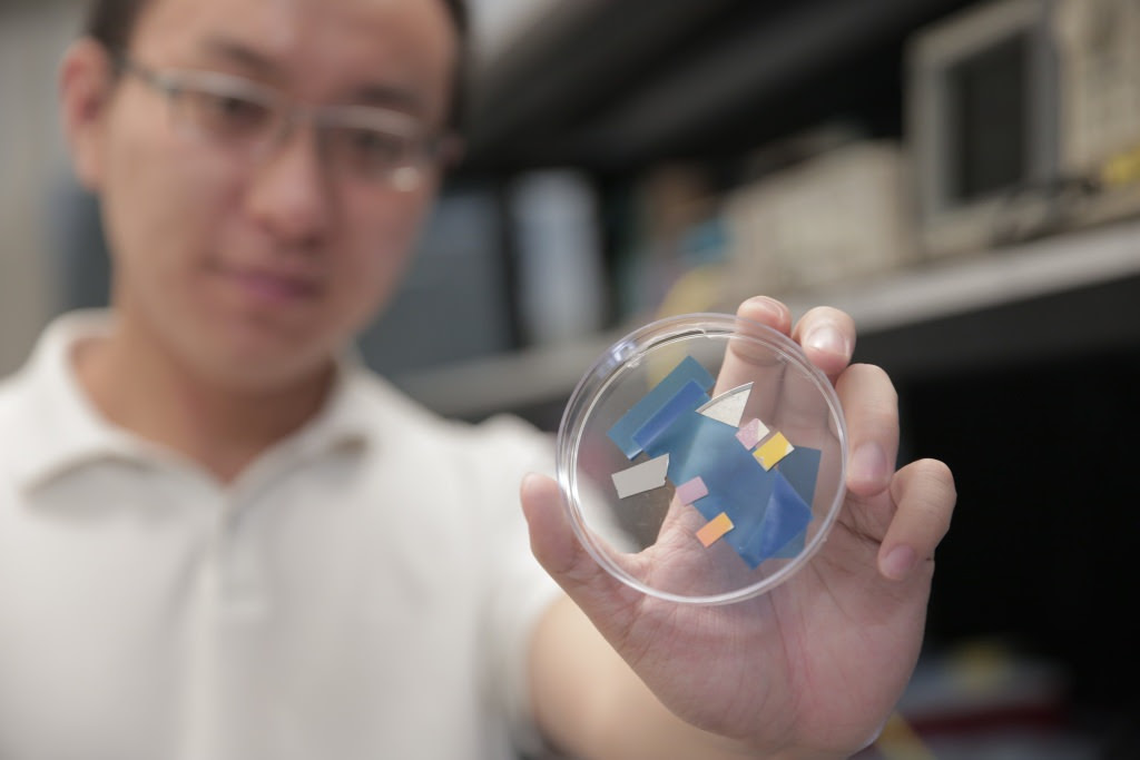 Photo: Researcher holding photodetector samples