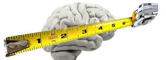 brain-measure (1)