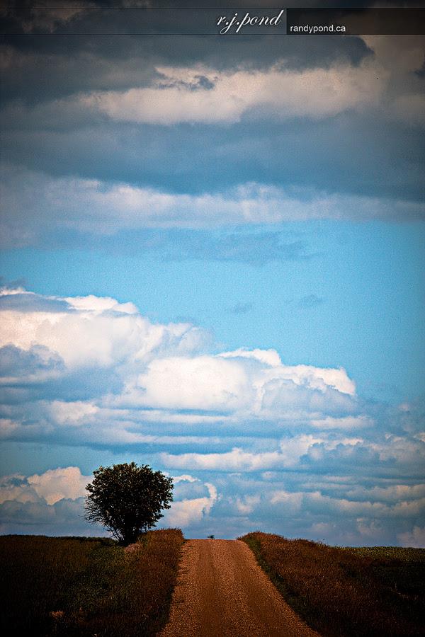 ~ Big Sky Alberta ~
