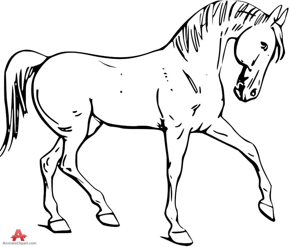 Horse Head Clipart | Free download on ClipArtMag