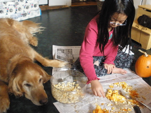 Olivia Sorting Seeds